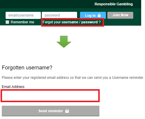 Paddy-Power-username-reset